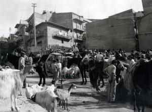 8-1986-fiera-Rosario